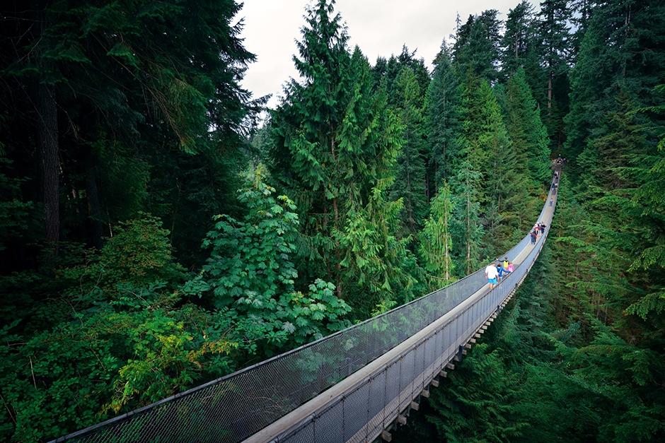 Capilano Suspension Bridge through trees in Vancouver