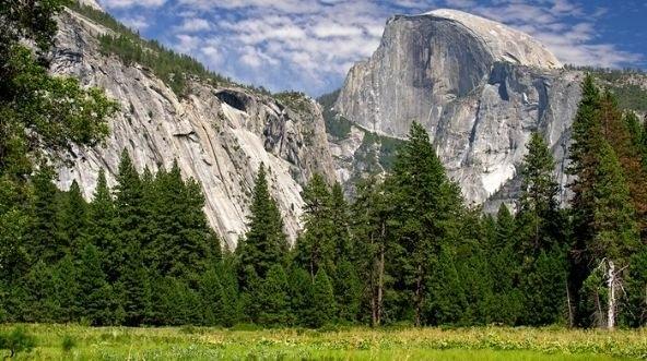 Yosemite National Park Train Trips